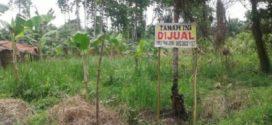 Tanah dan Kebun Dijual di Semarang dan Sekitarnya Agustus 2019